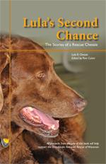 LulasSecondChanceBookcover