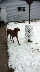 "Radar testing his ""Pole Bell"""